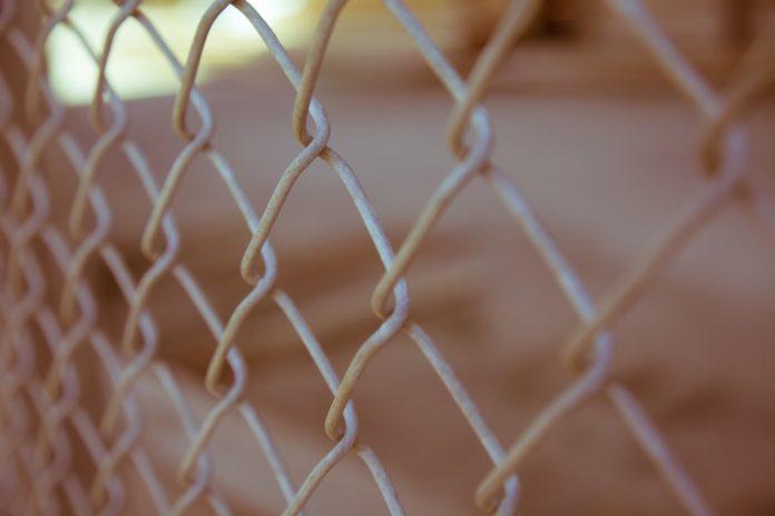 Siatka na ogrodzenie